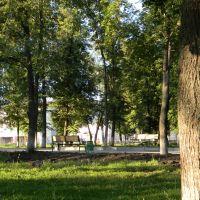 ковылкино парк, Ковылкино
