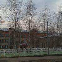 Школа., Кочкурово