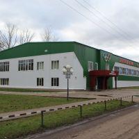 2011.11.04 Ромоданово Спорткомплекс, Ромоданово