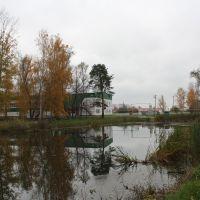 Пруд, Ромоданово