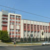 Саранск#73 2010, Саранск