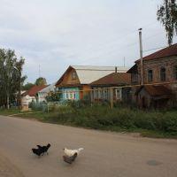 Сельская улочка, Теньгушево