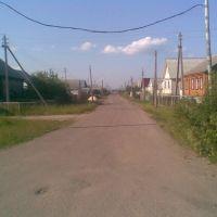 Улица Зелёная, Торбеево