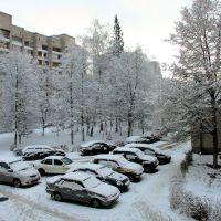 Утро нового 2012 года, Протвино