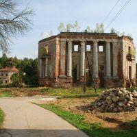 Усадьба Петровское (Княжищево). Общий вид руин с северо-западной стороны., Алабино