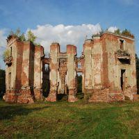 Усадьба Петровское (Княжищево). Руины главного дома, вид с юго-запада., Алабино