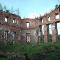 Усадьба Петровское (Княжищево). Руины главного дома, внутренний вид., Алабино