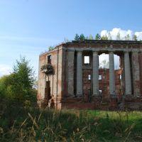 Усадьба Петровское (Княжищево). Руины главного дома, вид с юго-востока., Алабино