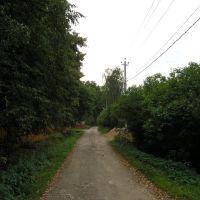 Aprelevka Волочаевская улица, Апрелевка