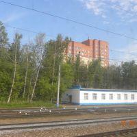 новые дома, Апрелевка