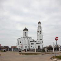Церковь Ильи Пророка, Апрелевка