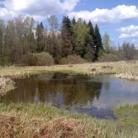 Весенний пруд на поле (pond on the field), Архангельское