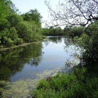 Nerskaya river, Ашитково