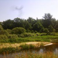 речка в Ашитковском, Ашитково