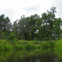 река Нерская, Ашитково