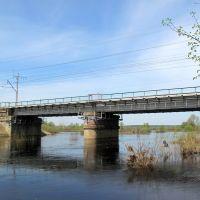 Мост в половодье, Ашитково
