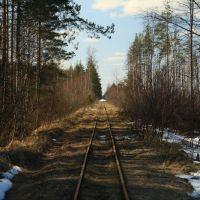 Узкоколейная железная дорога, Бакшеево
