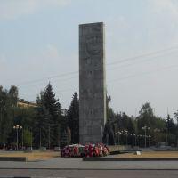 Памятник воину-победителю и землякам за Родину жизнь отдавшим на площади Славы..., Балашиха