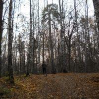 Бег по пересеченной местности..., Балашиха