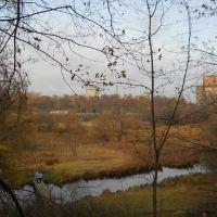 Живописный уголок ближнего Подмосковья..., Балашиха