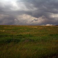 поле, Барыбино