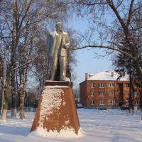 Ленин в Белоомуте, Белоомут