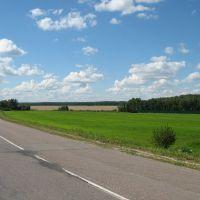 Дорога в сторону Шишкино, Белые Столбы