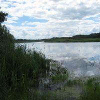 Река Ялма.Июль 2008, Бородино