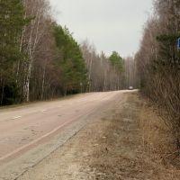 Касимовское шоссе, вид от Москвы (км 149+00), Бородино