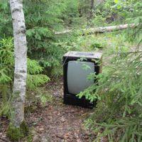 Даже телевизор есть!, Бородино