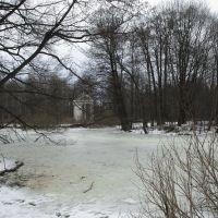 пруд в парке, Быково