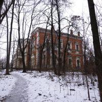 Дворец Воронцовых-Дашковых, Быково