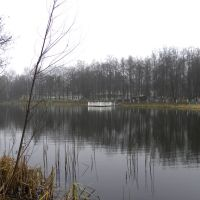Пруд санатория, Быково