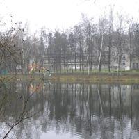 Малинковский пруд, Быково