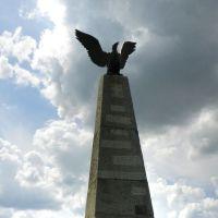 """Памятник французам. На нем надпись: """"Мертвым великой армии"""", Валуево"""