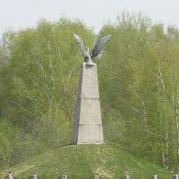 Памятник французам., Валуево