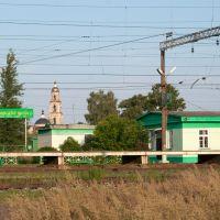 Railway station Ilyinsky Pogost, Внуково