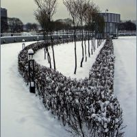 Зимняя геометрия / Winter geometry, Вождь Пролетариата