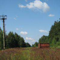 """Станция """"Ольховская"""" (2009), Вороново"""