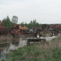 затопленные торфоразработки у Кубринска, Вороново