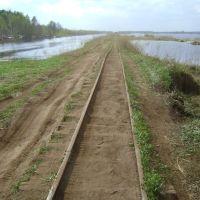 Кубринск, Торфяные болота., Вороново