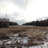 Сергиево-Посадский район, Московская область, Вороново