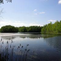 "Озеро с островами у деревни ""Новая Шурма"", Вороново"