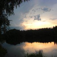 Пионерский пруд, Вороново