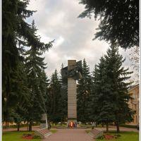 Памятник героям Великой Отечественной Войны, Воскресенск