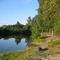 пруд, Восточный
