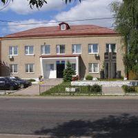 Администрация сельского поселения Гжельское & СовДеп (с. Речицы), Восточный