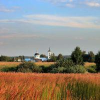 herbage Травостой, Востряково