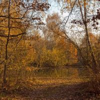 Осень-2, Востряково