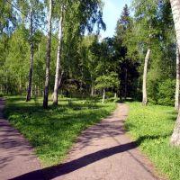 Парк  в  Высоковске, Высоковск
